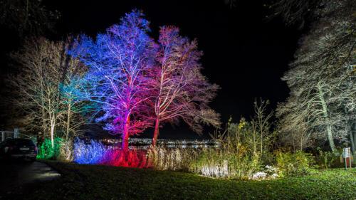 Strömstad in Light 2019